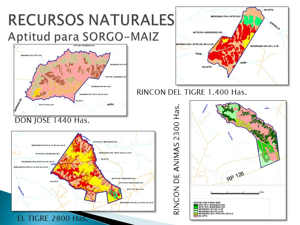 RECURSOS NATURALES Aptitud para SORGO-MAIZ