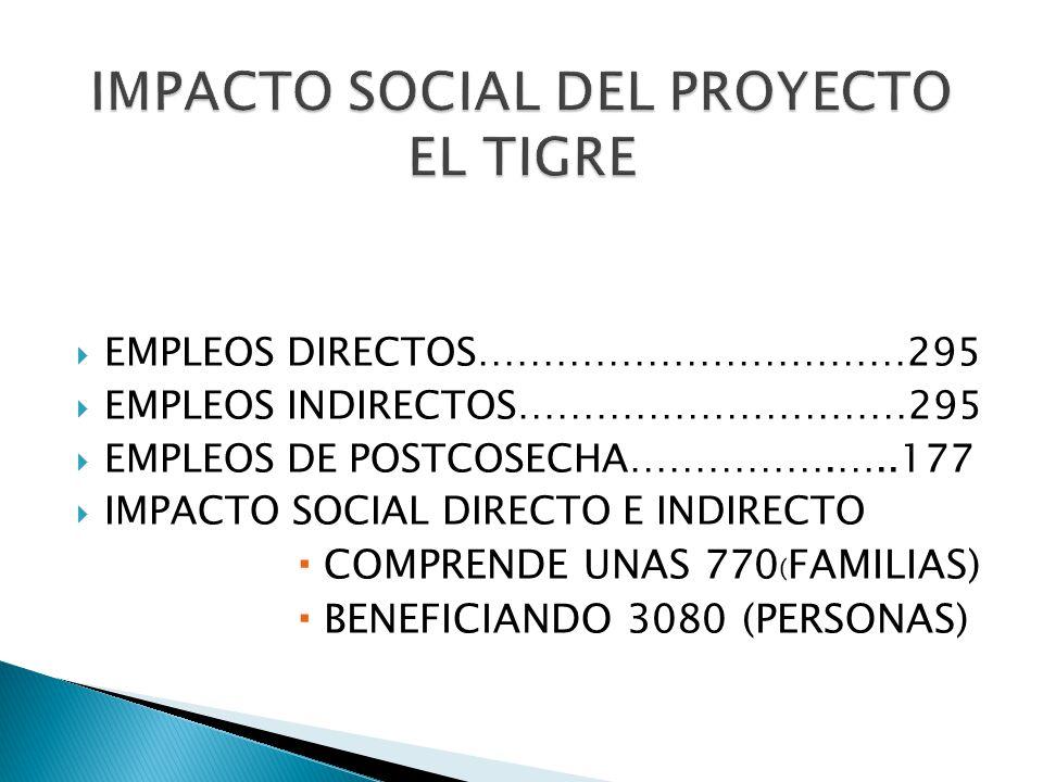 IMPACTO SOCIAL DEL PROYECTO EL TIGRE
