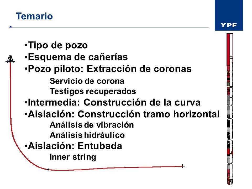 Pozo piloto: Extracción de coronas Servicio de corona