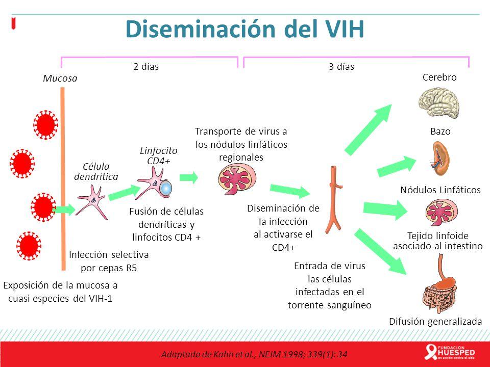 Diseminación del VIH 2 días 3 días Cerebro Mucosa
