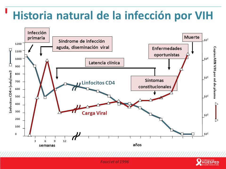 Historia natural de la infección por VIH aguda, diseminación viral