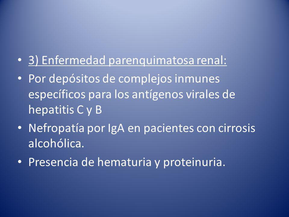 3) Enfermedad parenquimatosa renal: