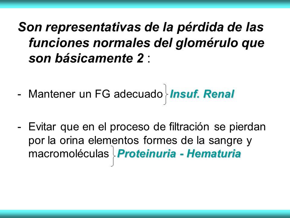 Son representativas de la pérdida de las funciones normales del glomérulo que son básicamente 2 :