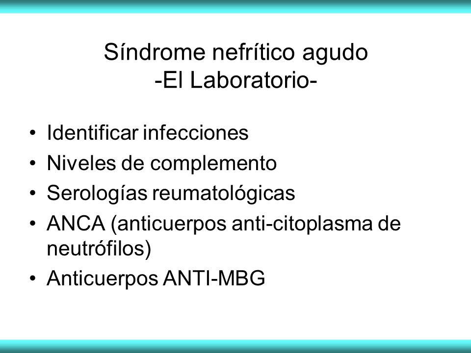 Síndrome nefrítico agudo -El Laboratorio-