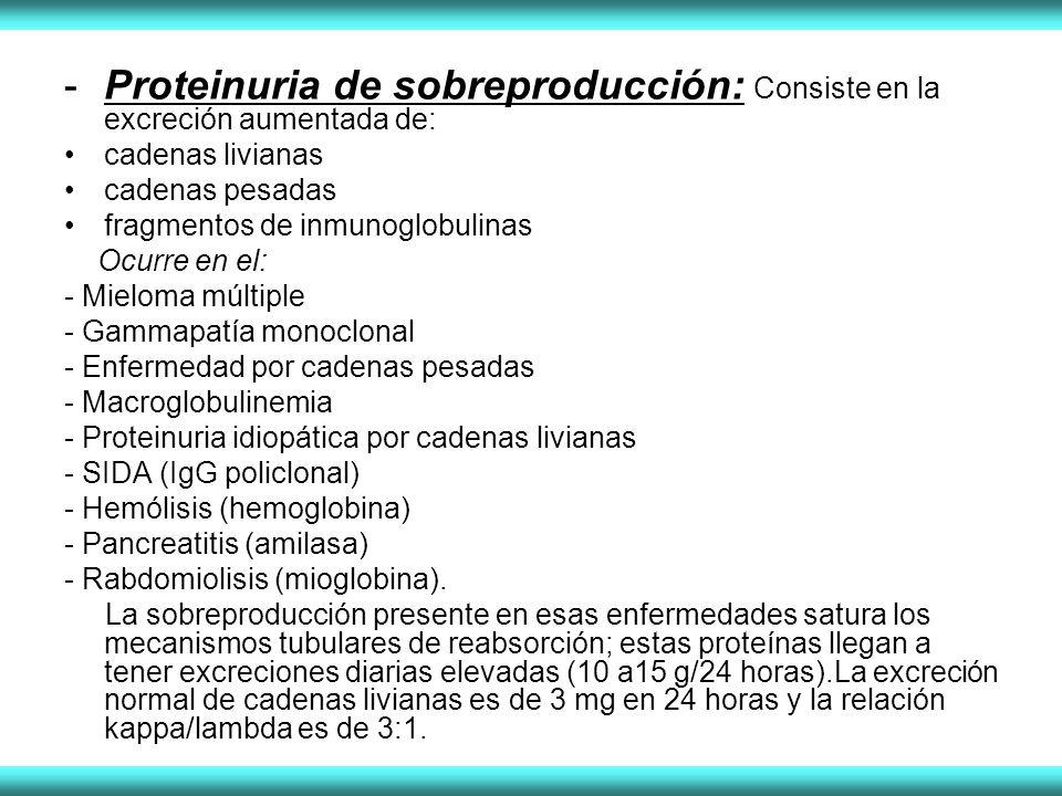 Proteinuria de sobreproducción: Consiste en la excreción aumentada de: