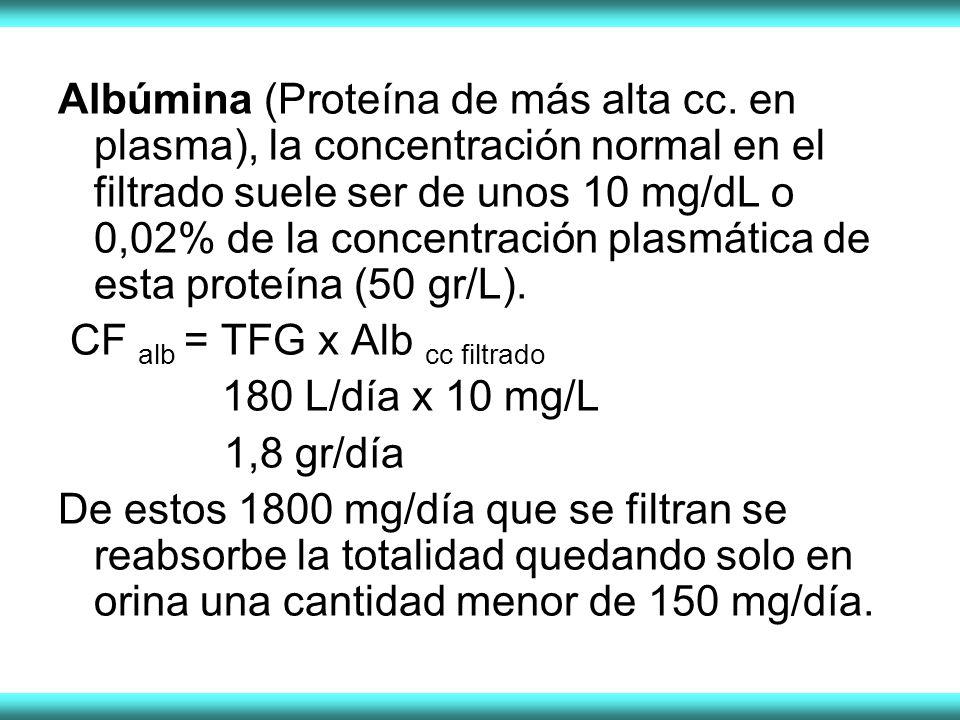 Albúmina (Proteína de más alta cc