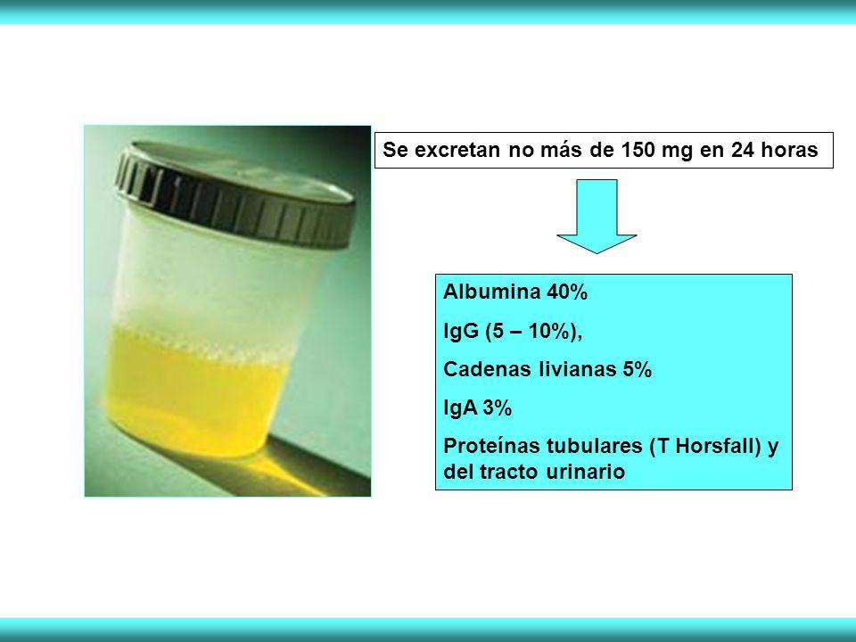 Se excretan no más de 150 mg en 24 horas