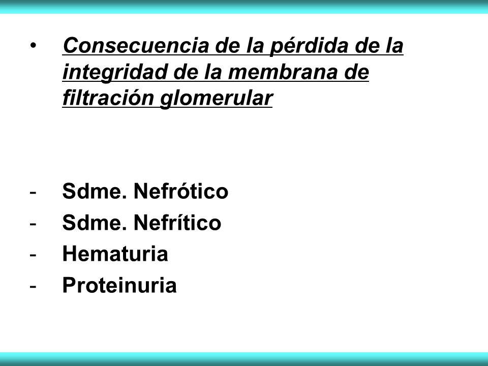 Consecuencia de la pérdida de la integridad de la membrana de filtración glomerular