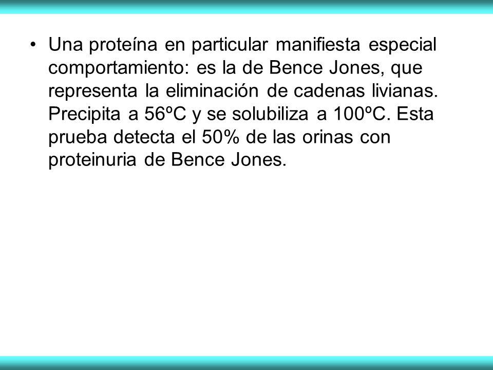 Una proteína en particular manifiesta especial comportamiento: es la de Bence Jones, que representa la eliminación de cadenas livianas.