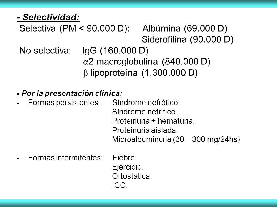 Selectiva (PM < 90.000 D): Albúmina (69.000 D)