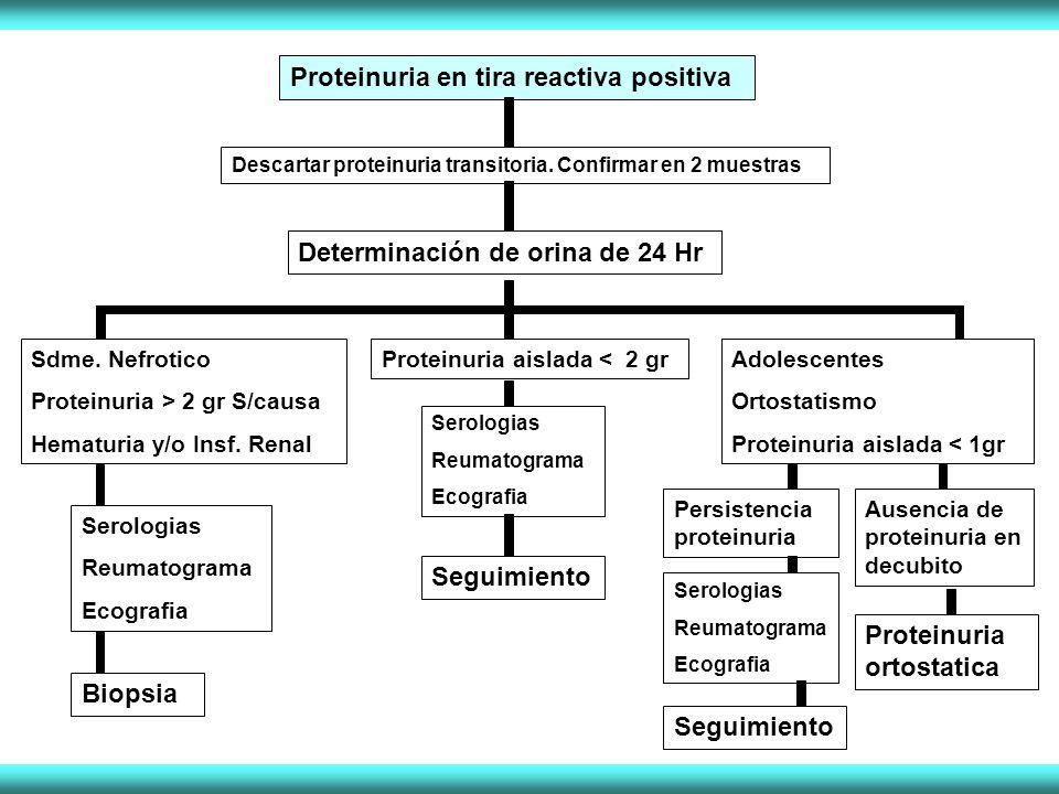 Proteinuria en tira reactiva positiva