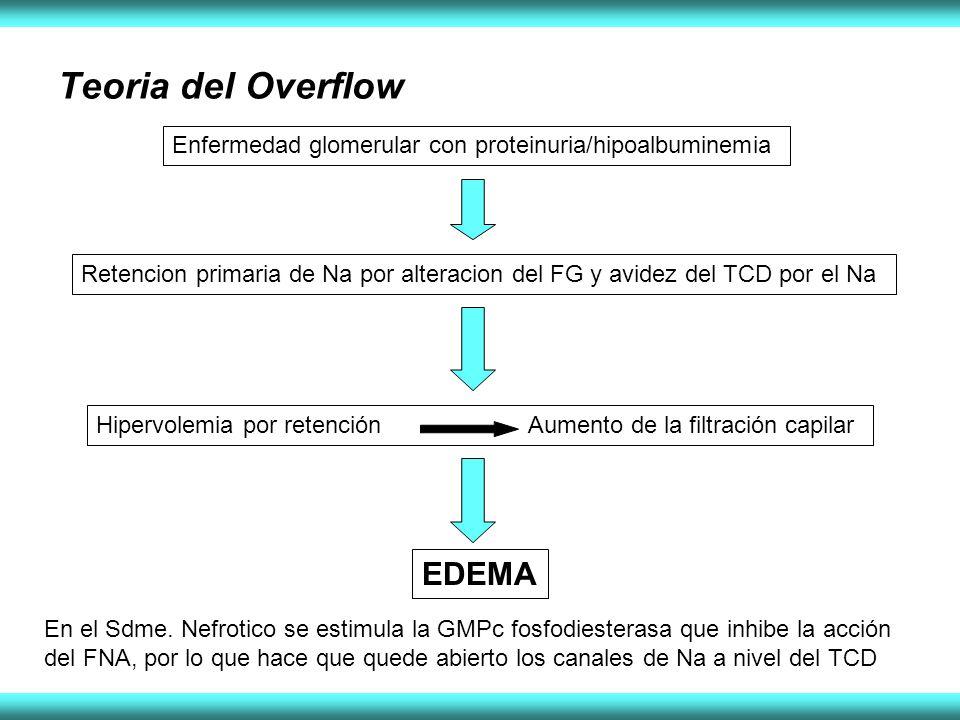 Teoria del Overflow EDEMA