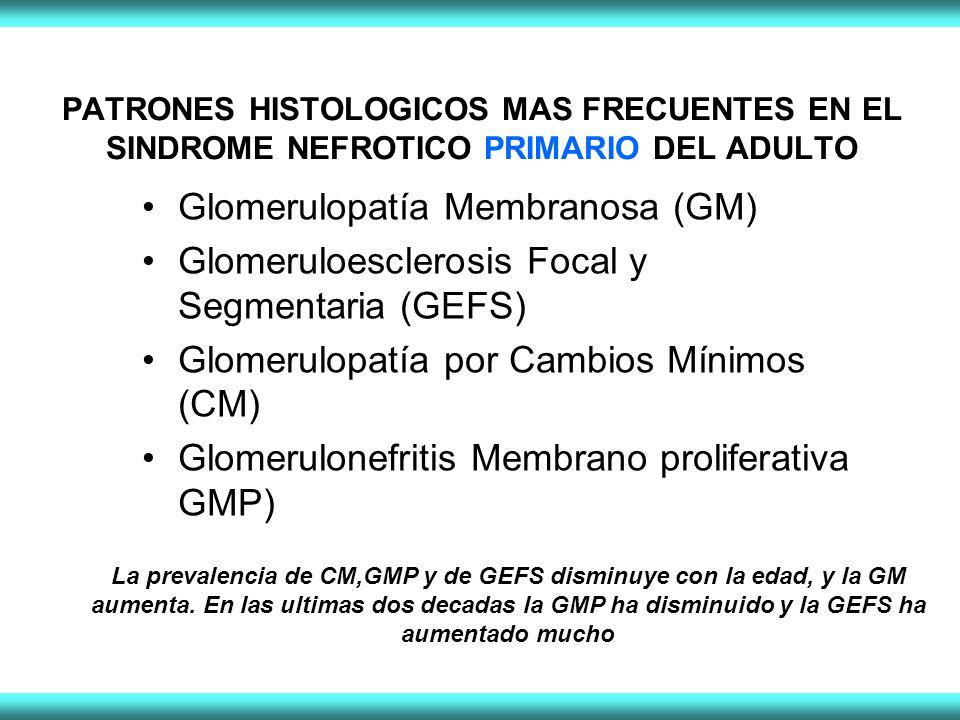 Glomerulopatía Membranosa (GM)