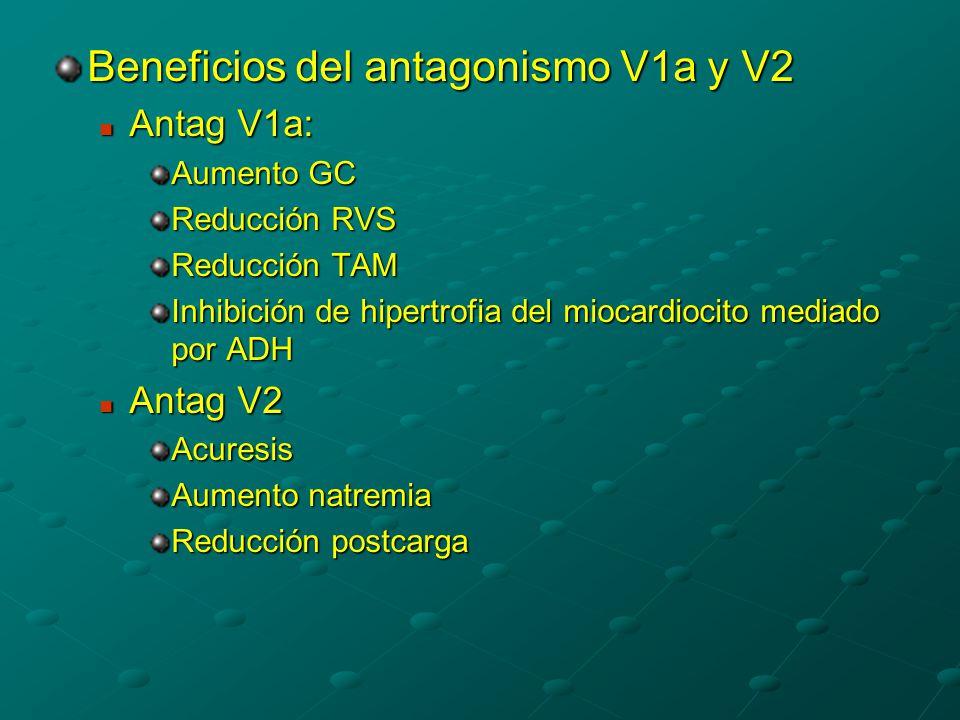 Beneficios del antagonismo V1a y V2