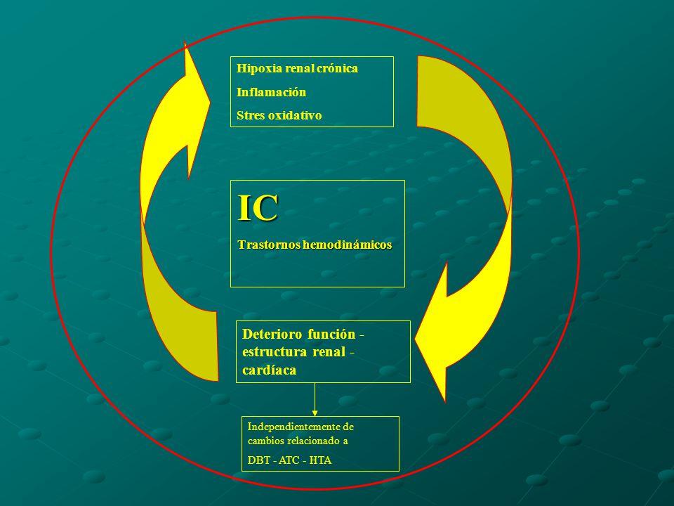 IC Deterioro función - estructura renal - cardíaca