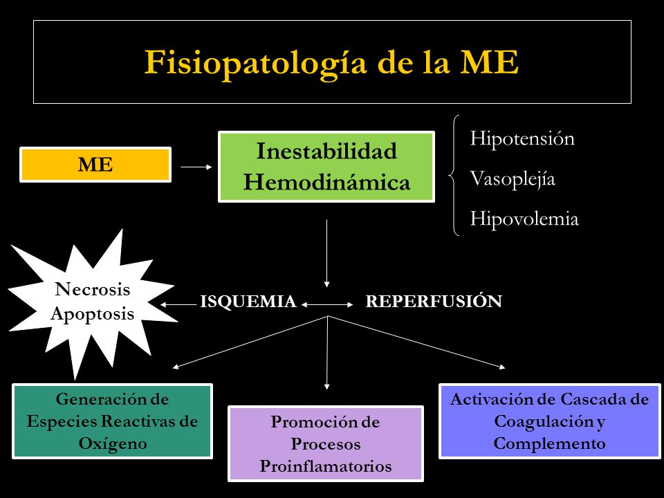 Fisiopatología de la ME