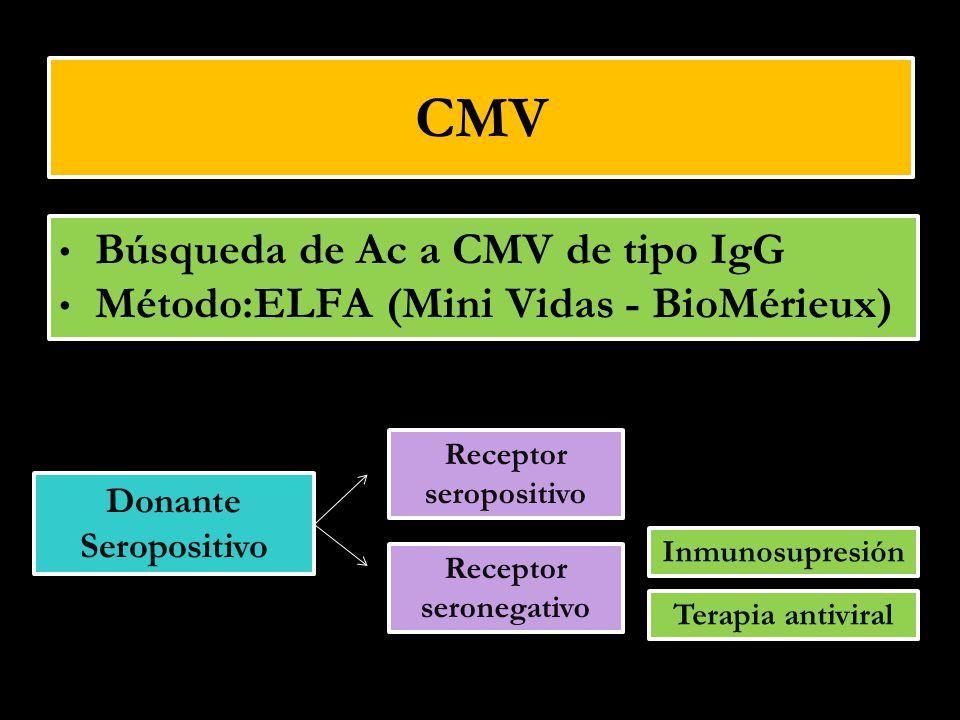Receptor seropositivo Receptor seronegativo