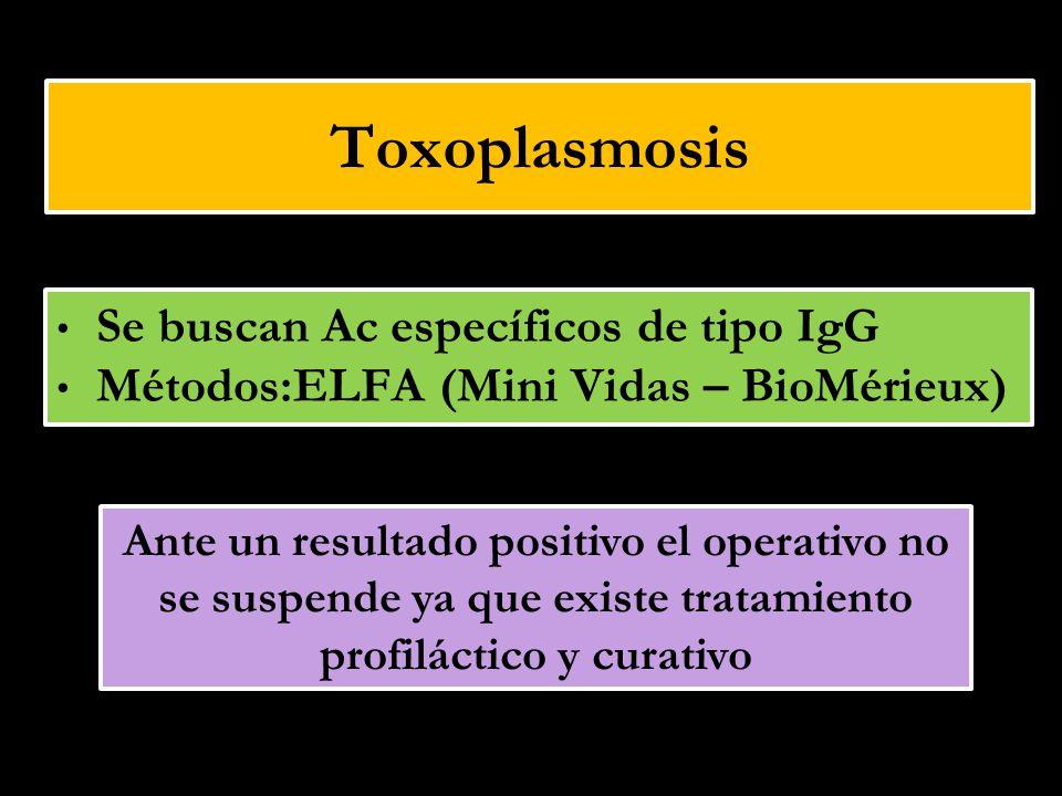 Toxoplasmosis Se buscan Ac específicos de tipo IgG