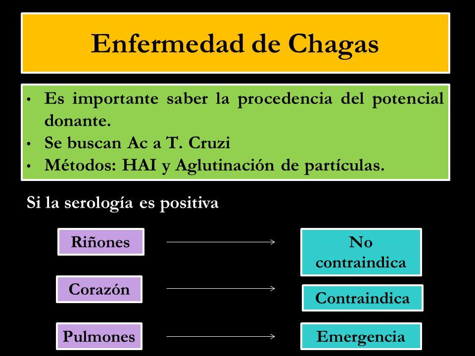Enfermedad de Chagas Es importante saber la procedencia del potencial donante. Se buscan Ac a T. Cruzi.