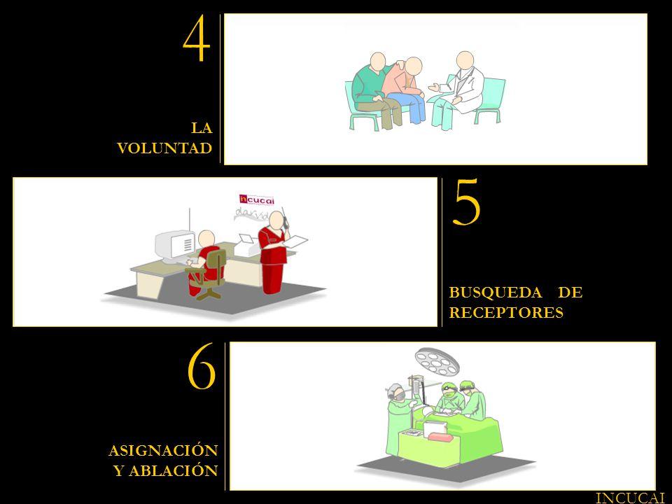4 5 6 LA VOLUNTAD BUSQUEDA DE RECEPTORES ASIGNACIÓN Y ABLACIÓN INCUCAI