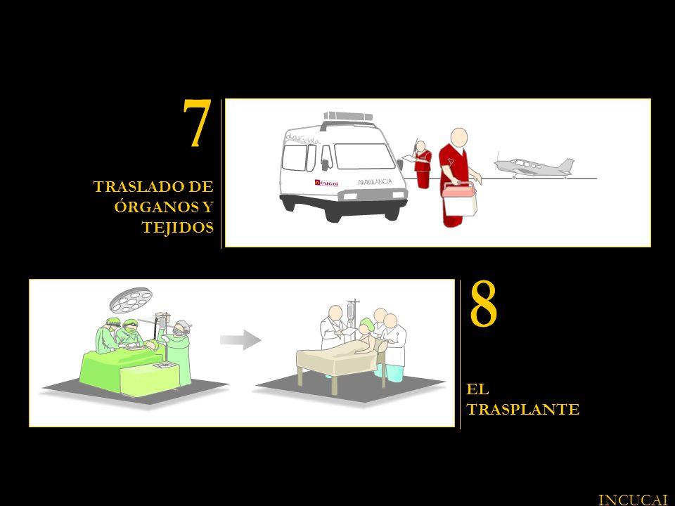 7 8 TRASLADO DE ÓRGANOS Y TEJIDOS EL TRASPLANTE INCUCAI