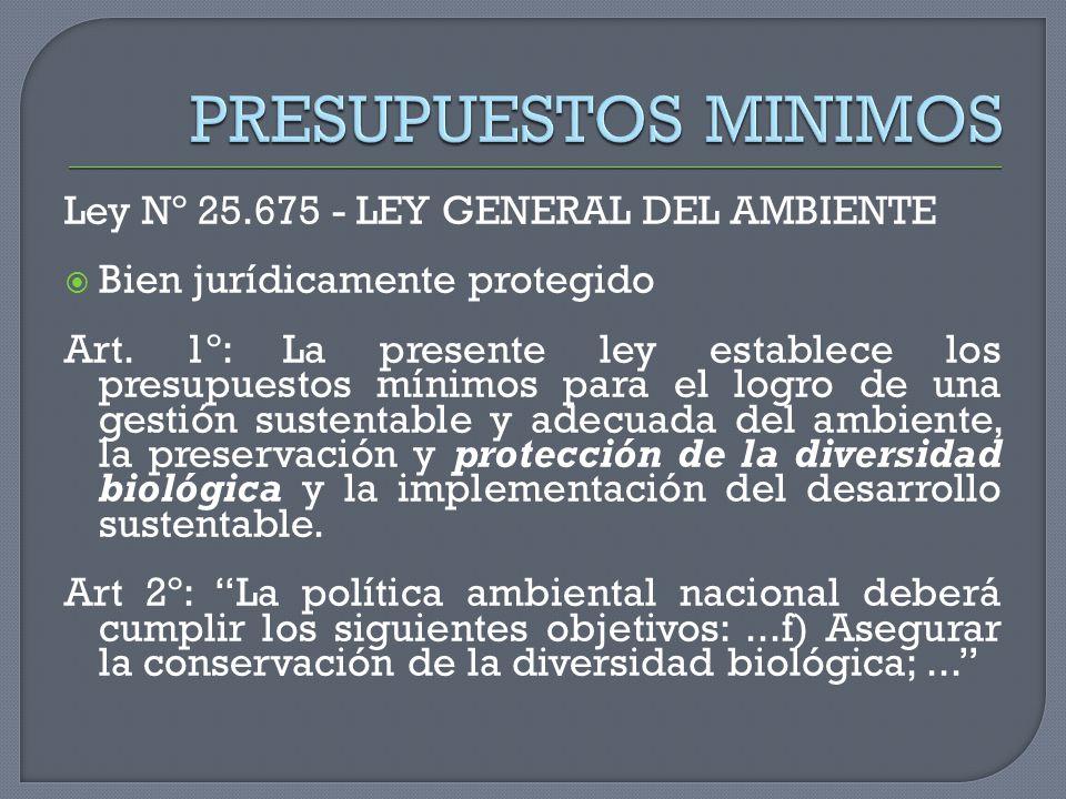 PRESUPUESTOS MINIMOS Ley Nº 25.675 - LEY GENERAL DEL AMBIENTE