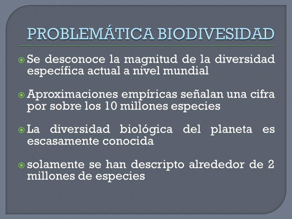 PROBLEMÁTICA BIODIVESIDAD