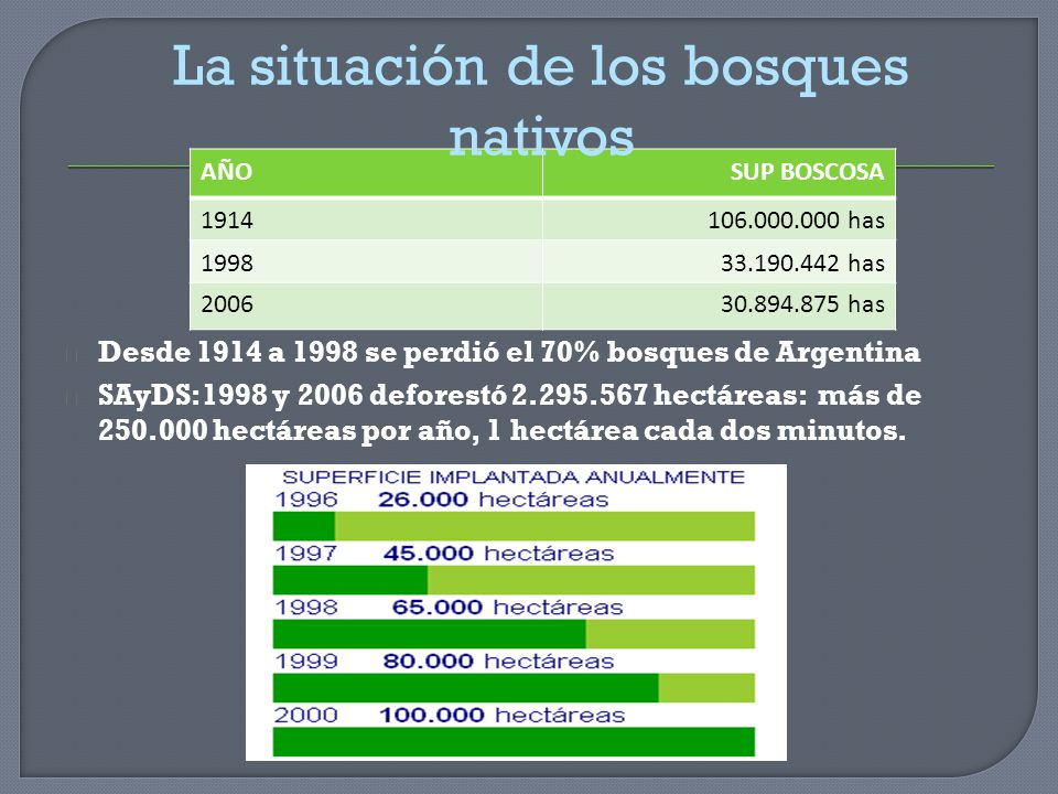 La situación de los bosques nativos