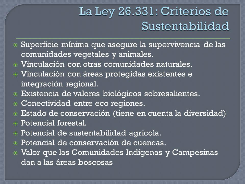 La Ley 26.331: Criterios de Sustentabilidad