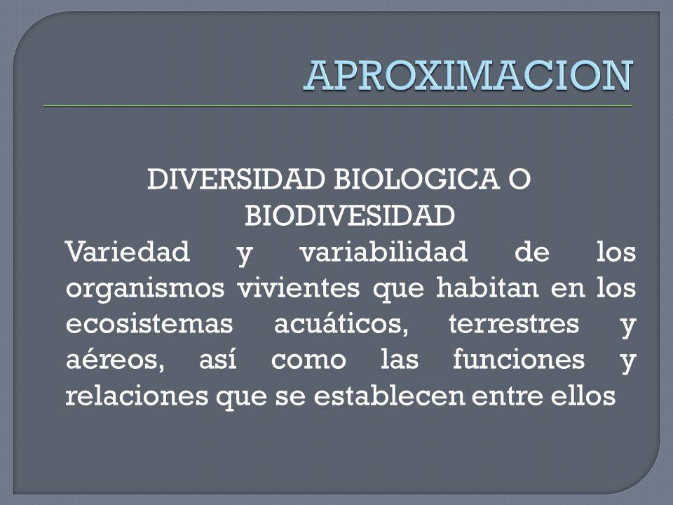 DIVERSIDAD BIOLOGICA O BIODIVESIDAD