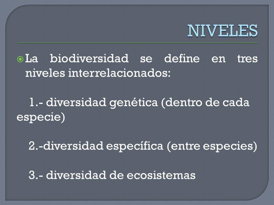 NIVELES La biodiversidad se define en tres niveles interrelacionados: