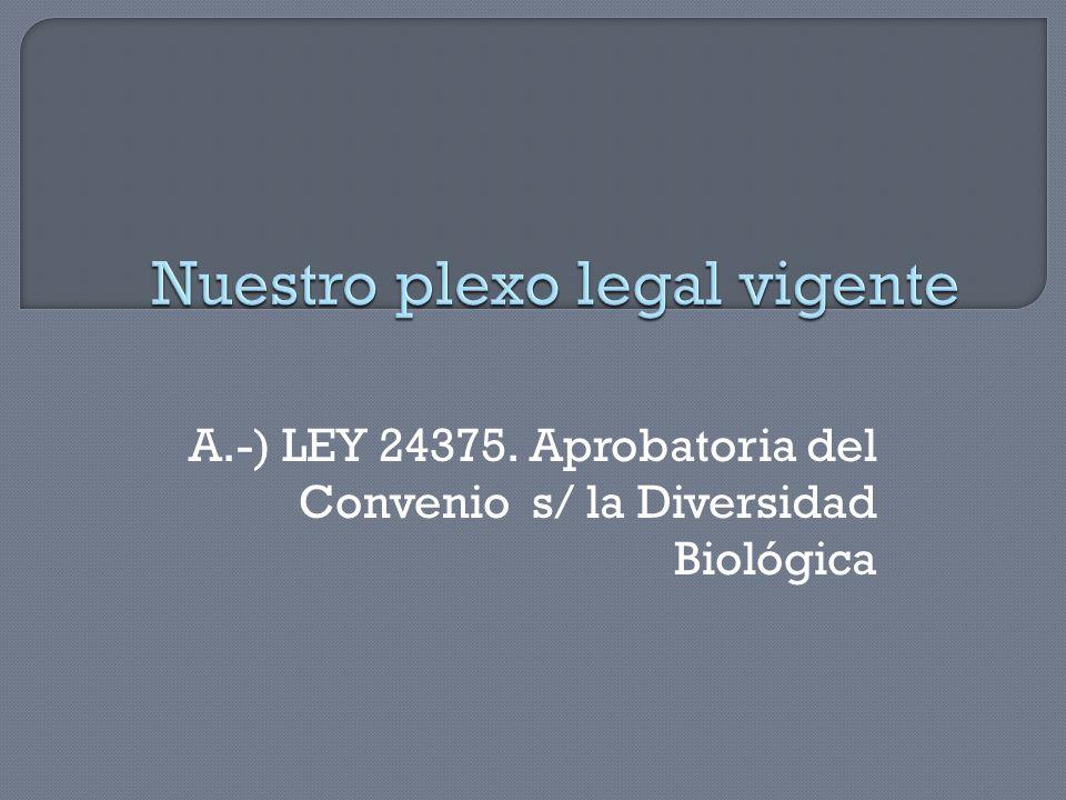 Nuestro plexo legal vigente