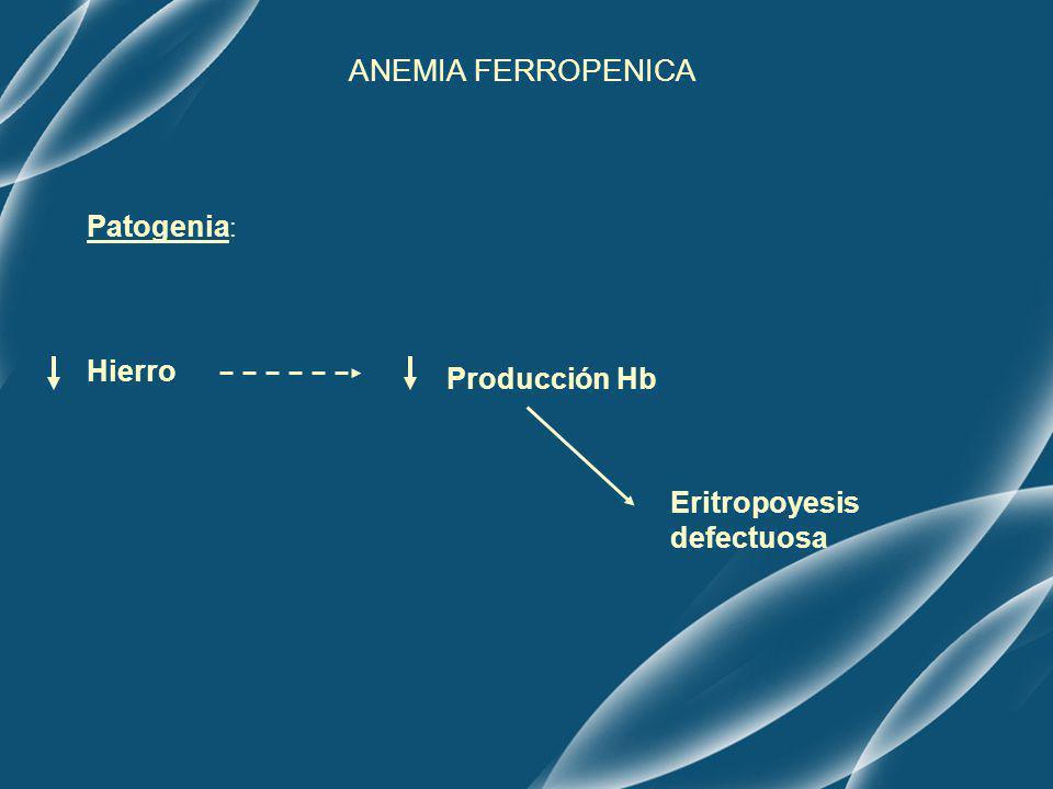 ANEMIA FERROPENICA Patogenia: Hierro Producción Hb Eritropoyesis