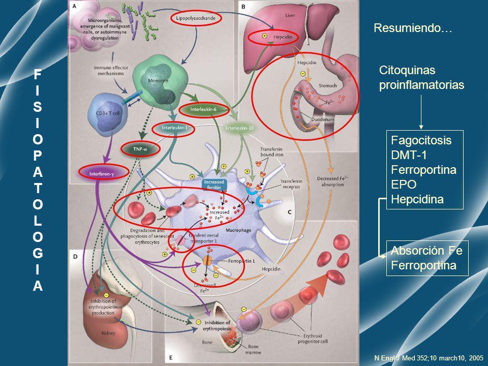 F I S O P A T L G Resumiendo… Citoquinas proinflamatorias Fagocitosis