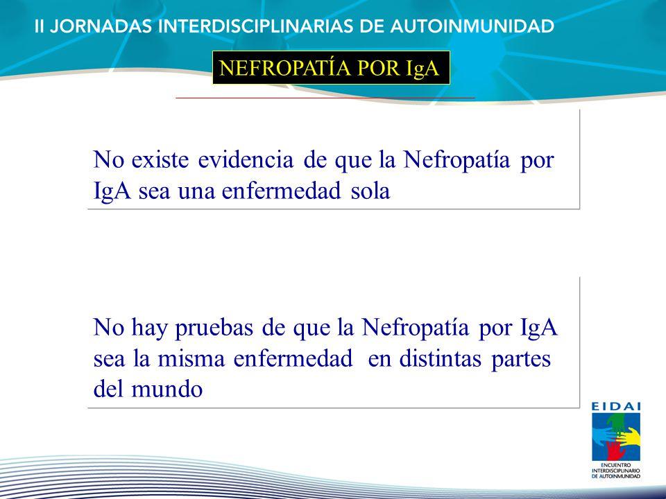 NEFROPATÍA POR IgA No existe evidencia de que la Nefropatía por IgA sea una enfermedad sola.