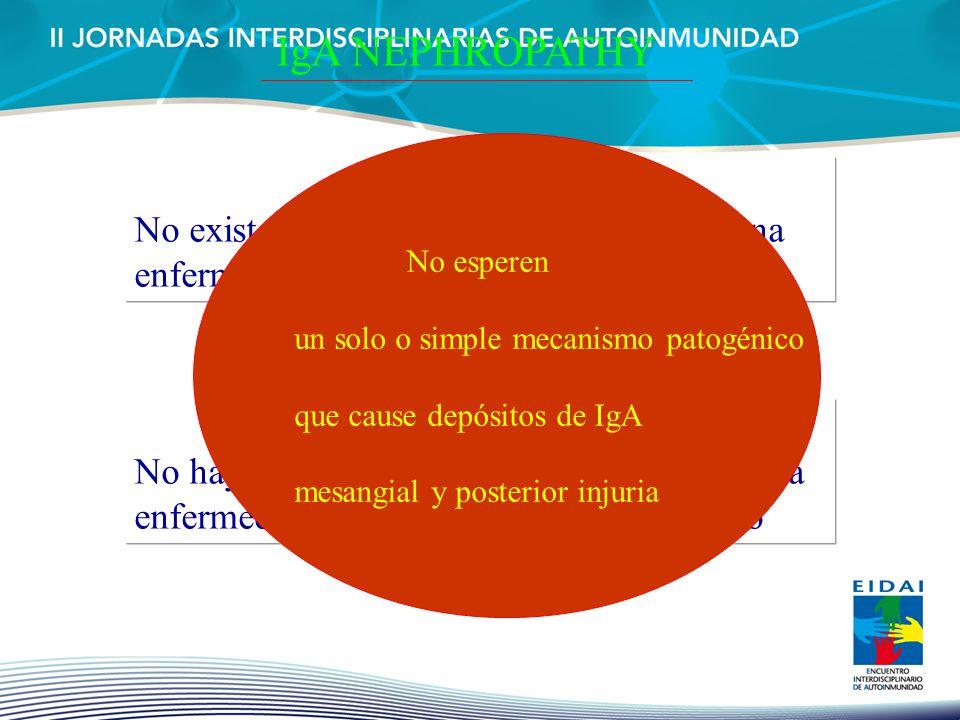 IgA NEPHROPATHY No esperen. un solo o simple mecanismo patogénico. que cause depósitos de IgA. mesangial y posterior injuria.