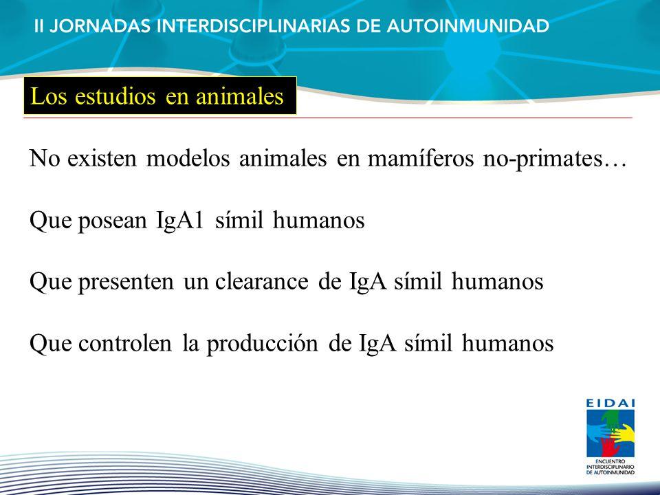 Los estudios en animales