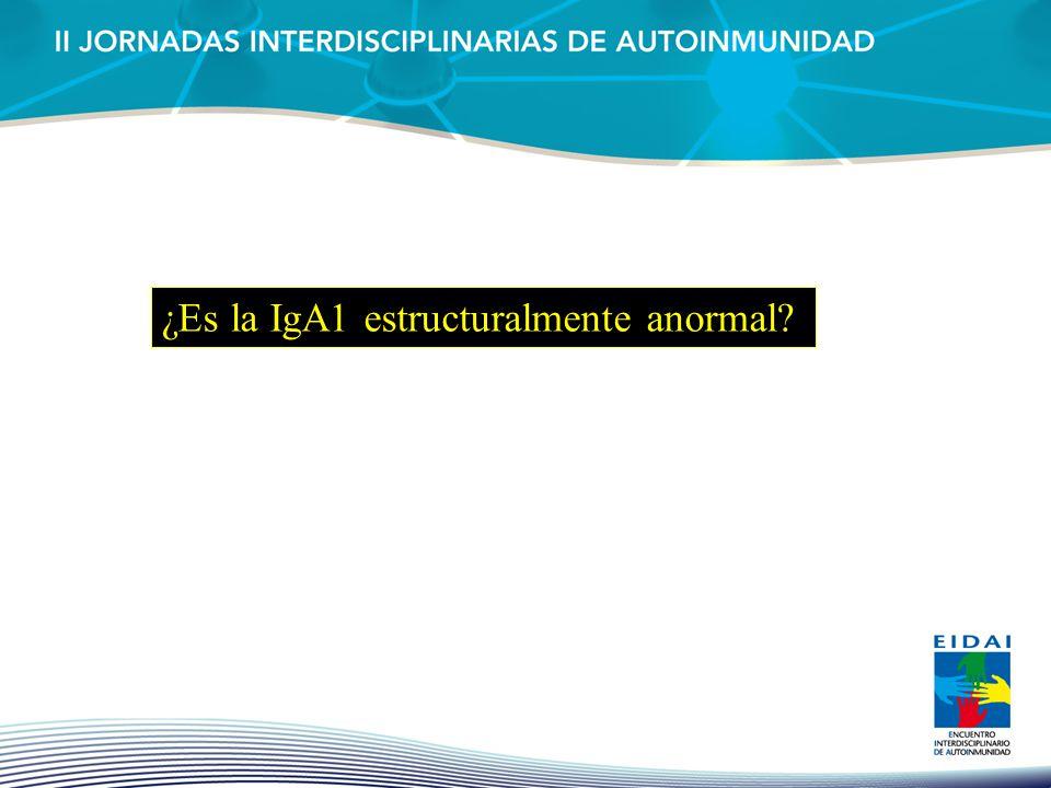 ¿Es la IgA1 estructuralmente anormal