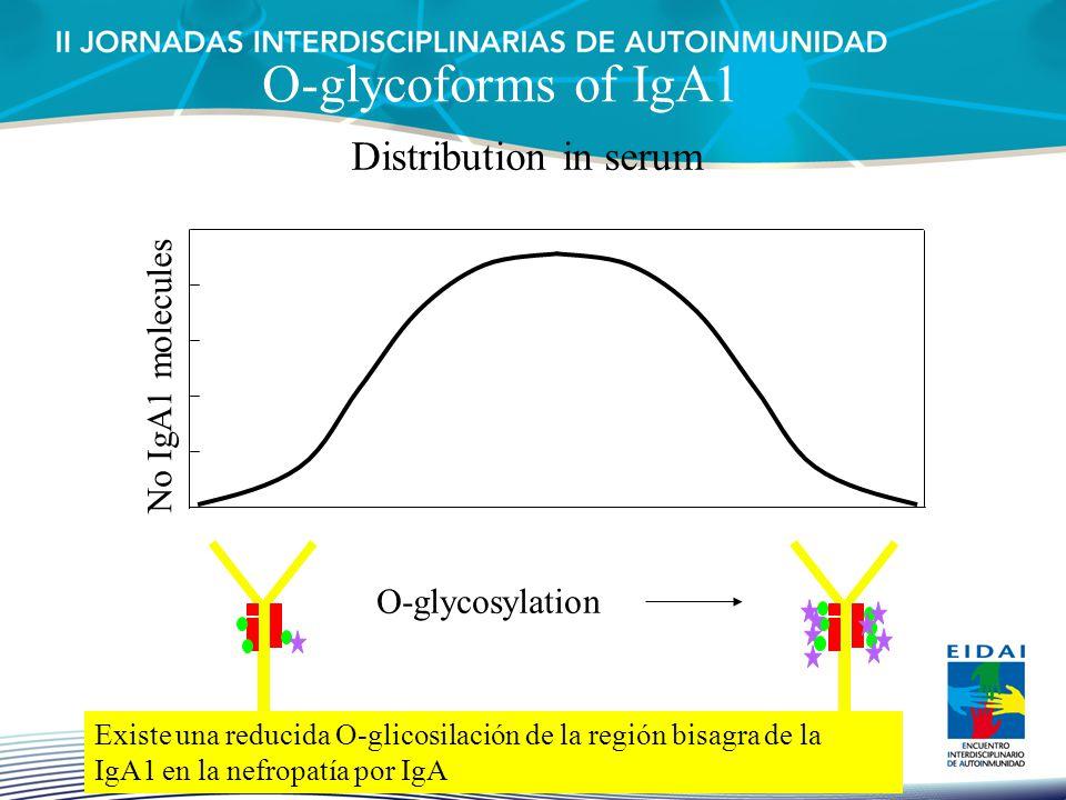 O-glycoforms of IgA1 Distribution in serum No IgA1 molecules