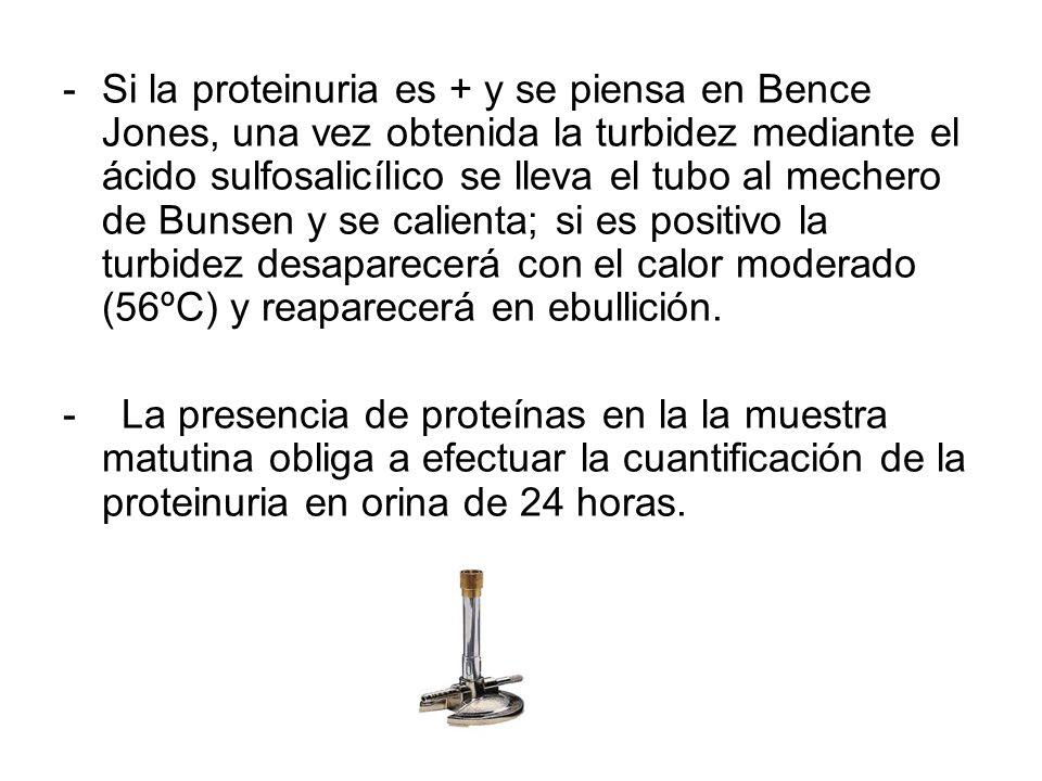 Si la proteinuria es + y se piensa en Bence Jones, una vez obtenida la turbidez mediante el ácido sulfosalicílico se lleva el tubo al mechero de Bunsen y se calienta; si es positivo la turbidez desaparecerá con el calor moderado (56ºC) y reaparecerá en ebullición.