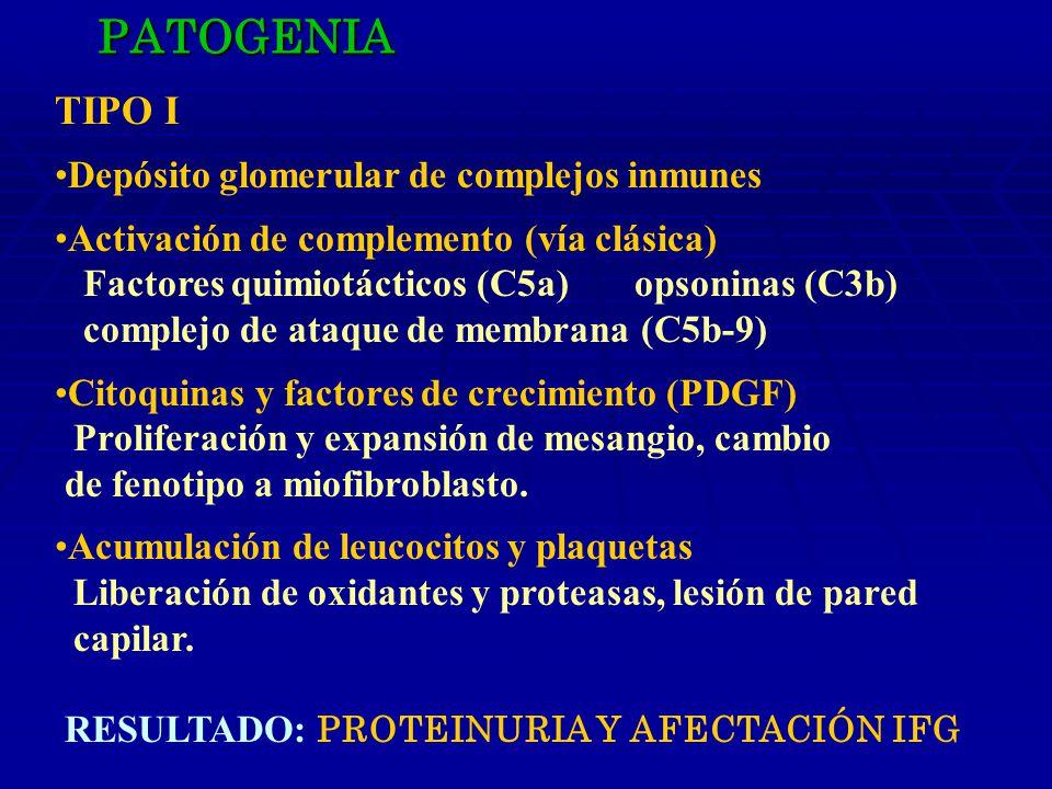 PATOGENIA TIPO I Depósito glomerular de complejos inmunes