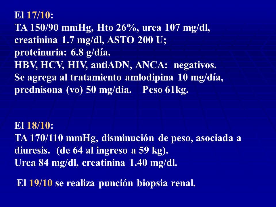 El 17/10: TA 150/90 mmHg, Hto 26%, urea 107 mg/dl, creatinina 1.7 mg/dl, ASTO 200 U; proteinuria: 6.8 g/día.