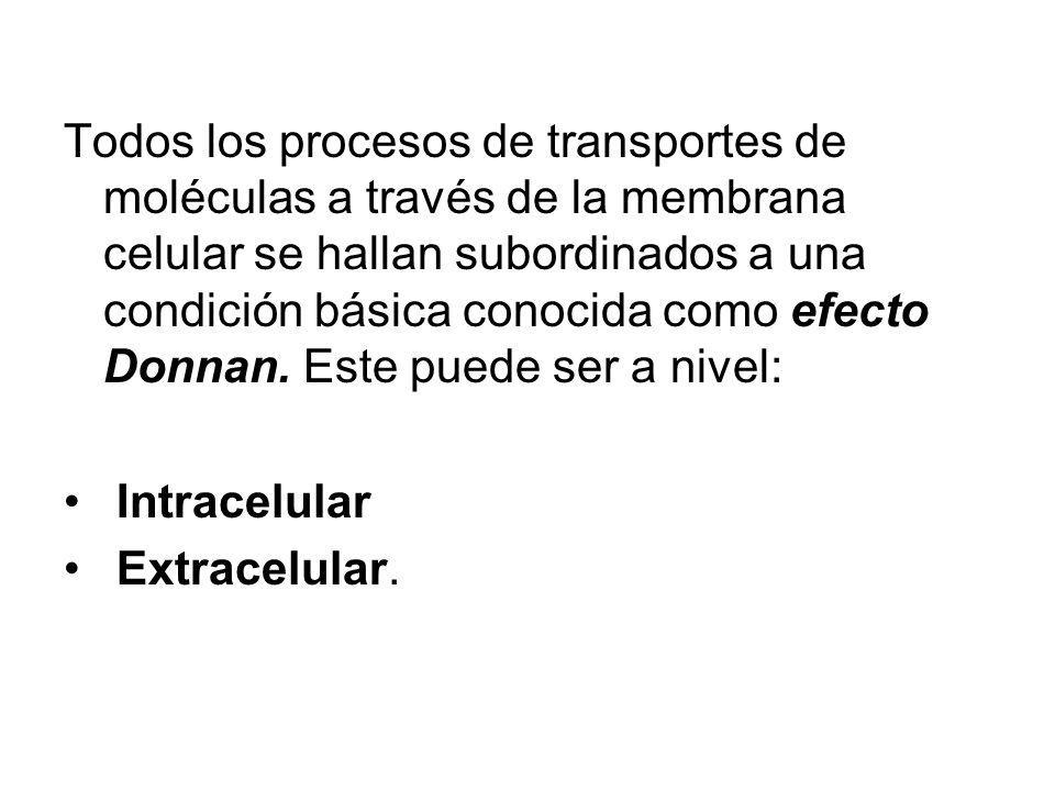Todos los procesos de transportes de moléculas a través de la membrana celular se hallan subordinados a una condición básica conocida como efecto Donnan. Este puede ser a nivel: