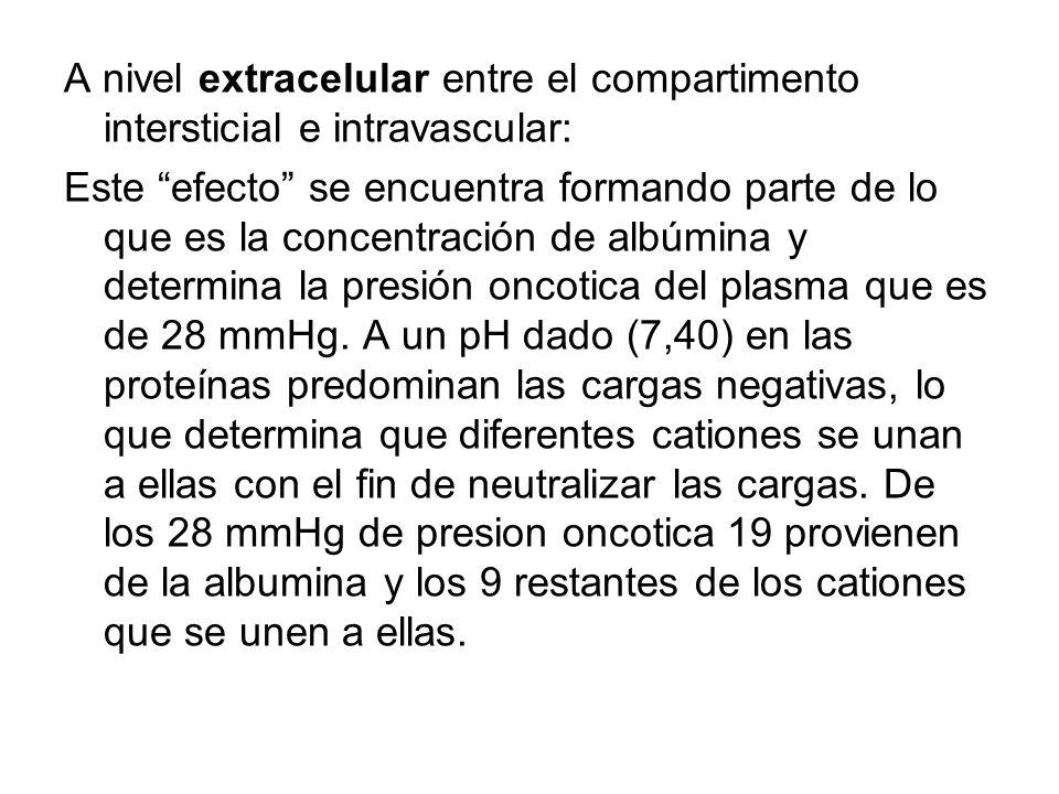 A nivel extracelular entre el compartimento intersticial e intravascular: