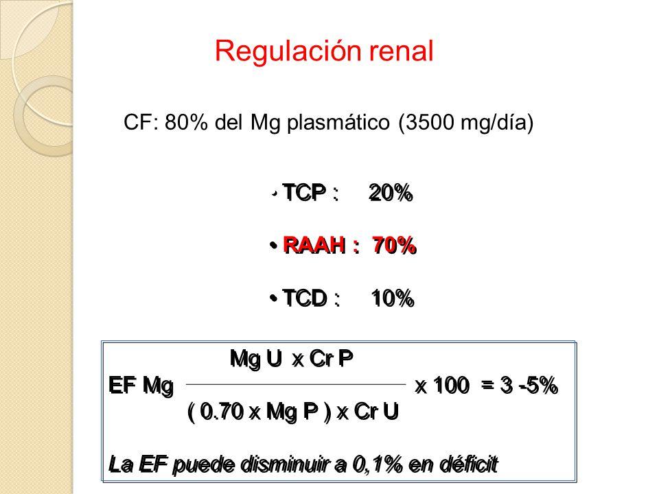 Regulación renal CF: 80% del Mg plasmático (3500 mg/día) TCP : 20%