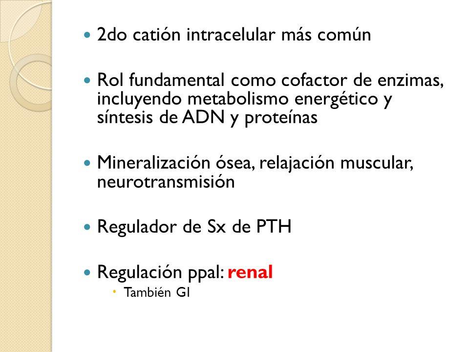 2do catión intracelular más común