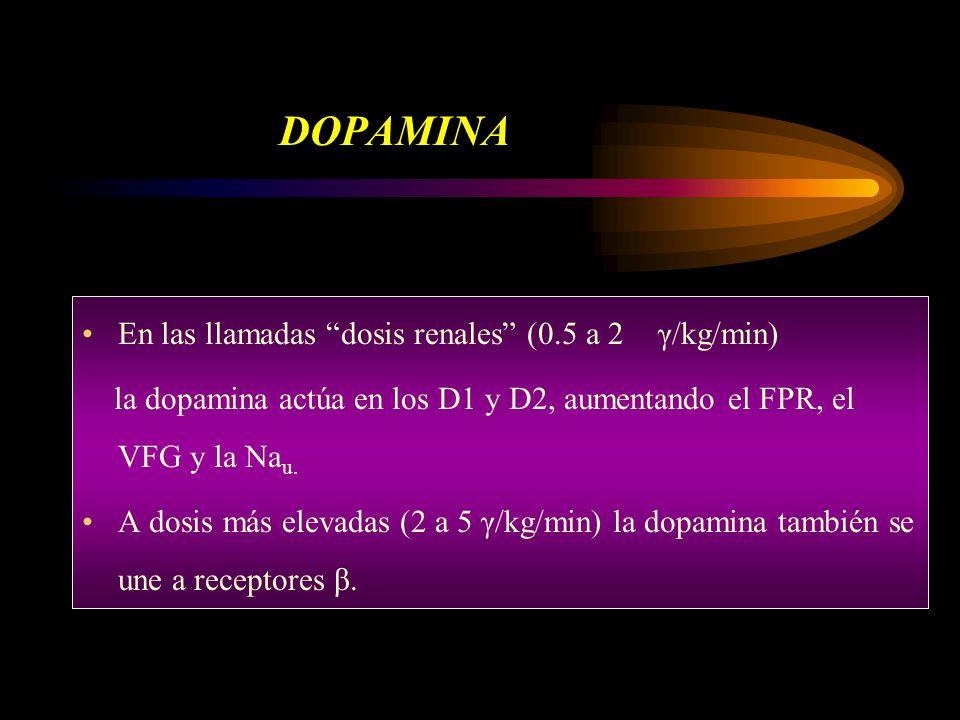 DOPAMINA En las llamadas dosis renales (0.5 a 2 γ/kg/min)