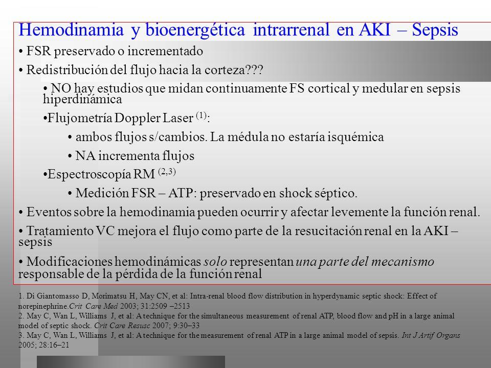 Hemodinamia y bioenergética intrarrenal en AKI – Sepsis