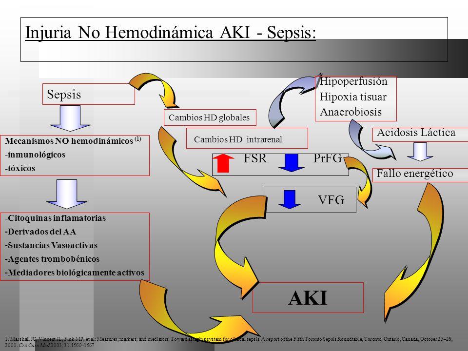 AKI Injuria No Hemodinámica AKI - Sepsis: Sepsis Cambios HD intrarenal