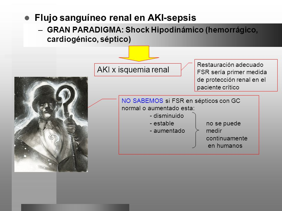 Flujo sanguíneo renal en AKI-sepsis